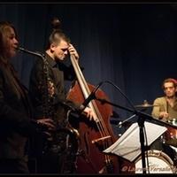 Davy Palumbo Trio © Laurence Versalie - www.facebook.com/DavyPalumboTrio